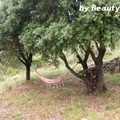 Hamac - farniente d'été