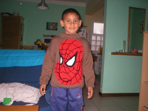 Pull / Jersey Spiderman Adam
