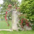 portail fleuris