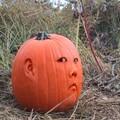 trucho_p_pumpkinkid