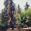 Le Plantier vue 3