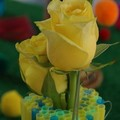Dossier_fleurs