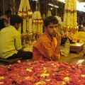 marche Mysore