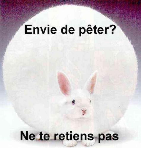 envi_de_peter