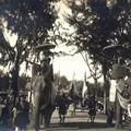 Eléphants précédant le cortège