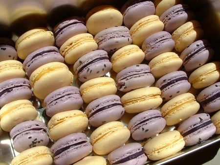 macarons_passion_myrtille