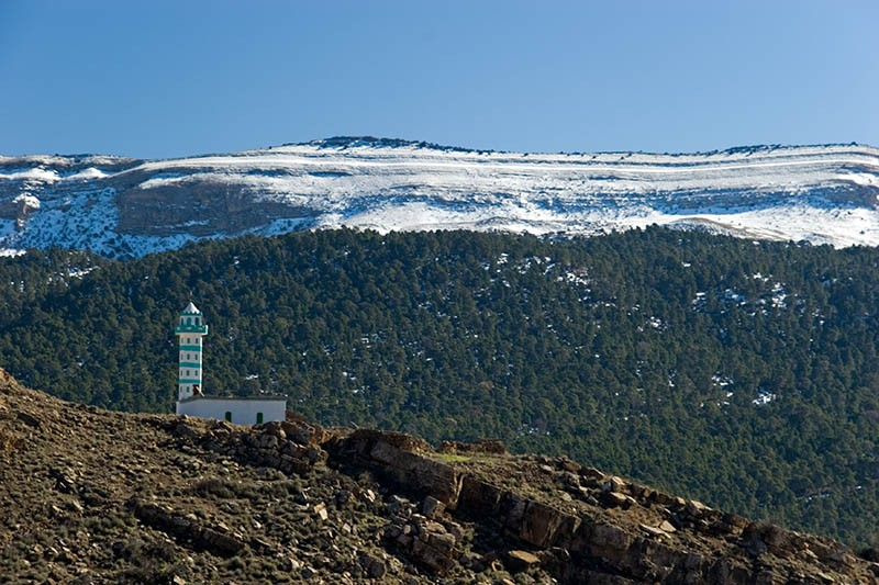 ذاكرة وطن الجزائريين aures1.jpg