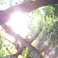 L'araignée du soleil...ouvre tes oreilles... :-/