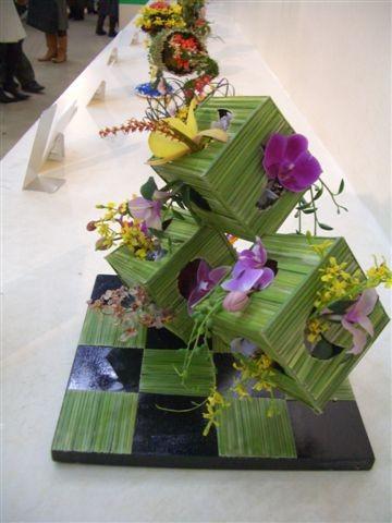 Orchidee_2006_02_19__37_