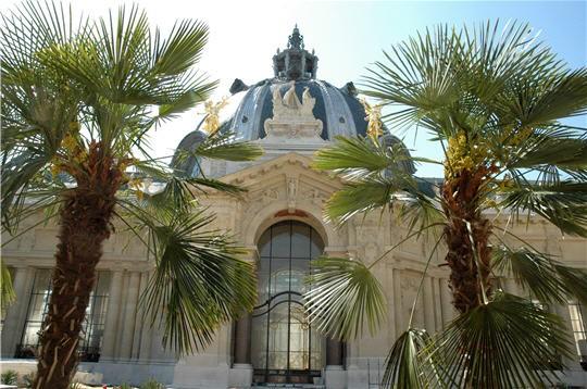 16 - Petit Palais - Fçade arrière côté Jardin