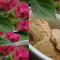 Glace_speculoos_impatiences
