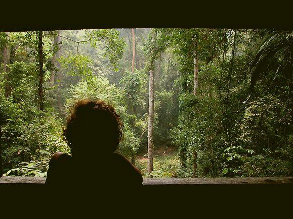 junglescope