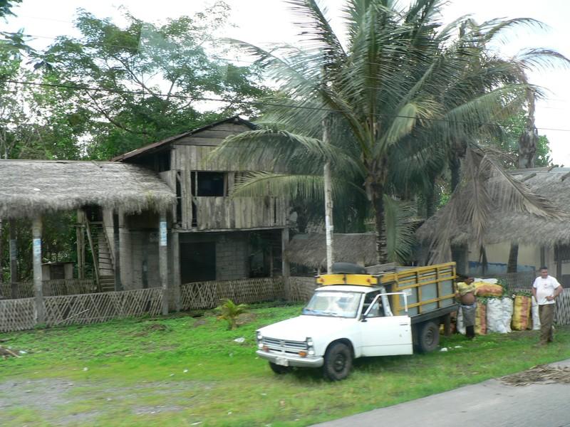 Sur la route de Puerto Lopez