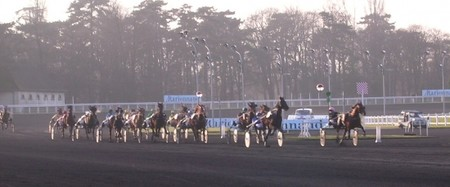cheval_animaux_courses_bord_vincennes_600720