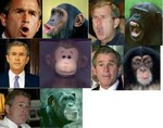 bush_versus_monkey