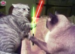 chat_star_wars