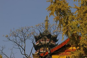 2005_11_27___nj___jiming_temple__16_