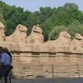 Les sphinx à tête de bélier