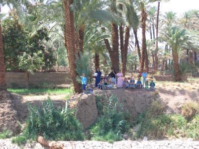 Le long du Nil