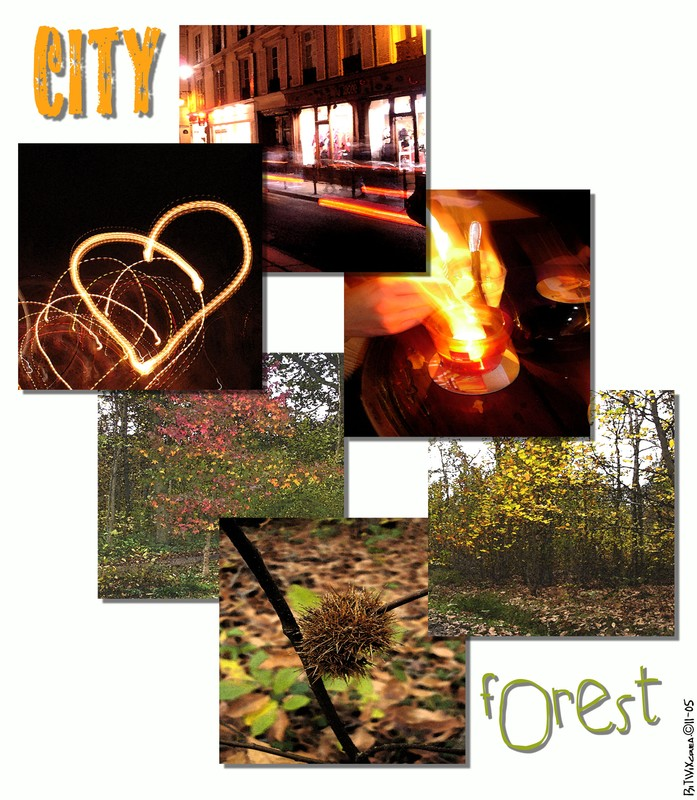 City vs. Forest