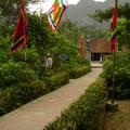 Temple Dinh