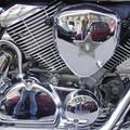Moto portrait