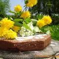 gateau_choc_table_jardin_fleurs