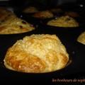muffins santé au son d'avoine et pépites de chocolat 2