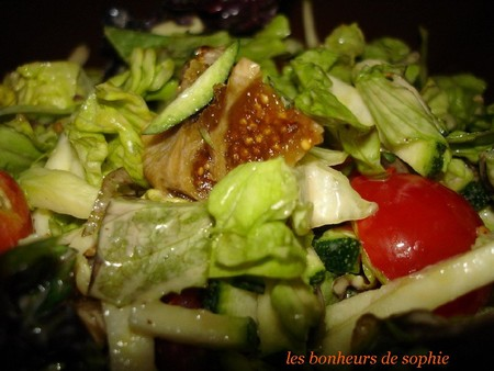 salade_mesclin_courgette_graines_figues_zoom