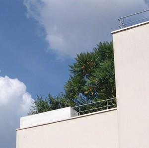 arbre_sur_toit_02