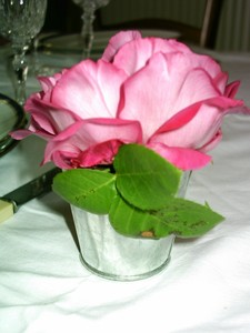 table_rose