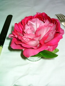table_rose_2