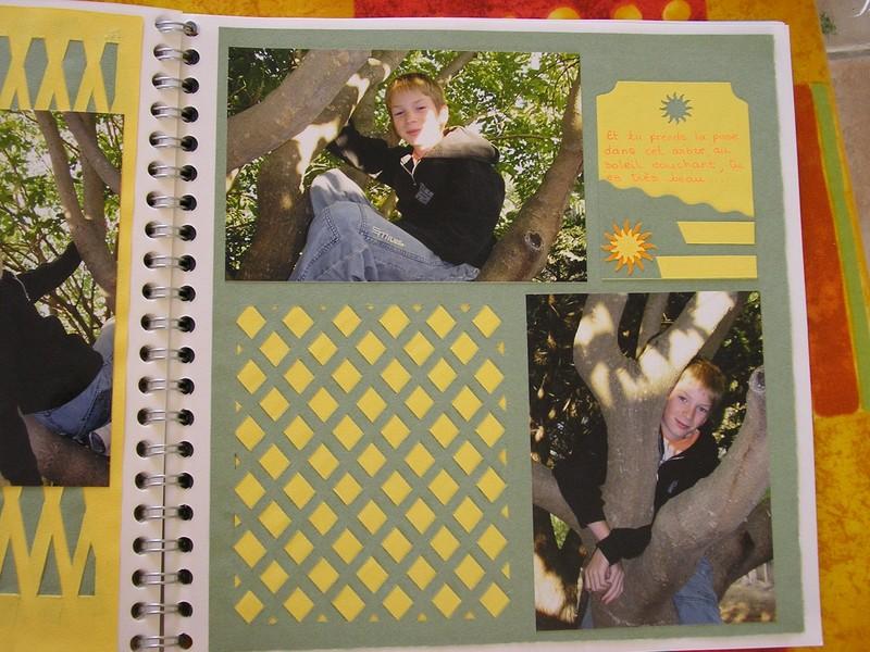 dans les arbres page 2