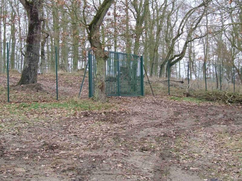 Création d'un nouveau portail vers le parc.