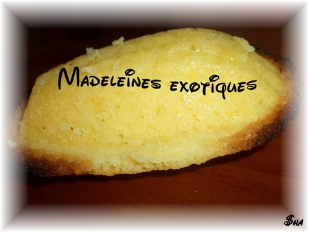 madeleines_exotiques