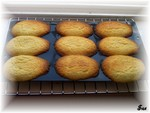 madeleines_exotiques2
