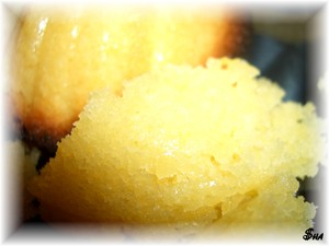 madeleines_exotiques3