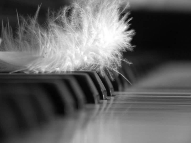 Pianoplume