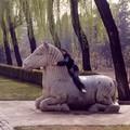 L'allée de statues impériales - près de Pékin 2