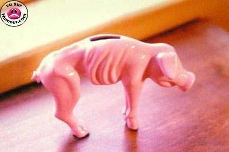 cochon tirelire
