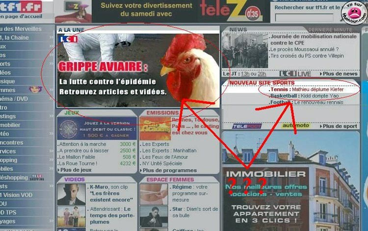 tf1 grippe aviaire