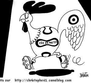 le coq 5