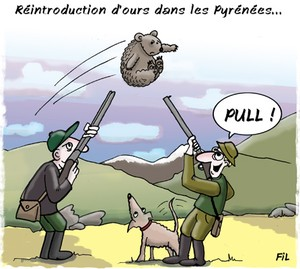 ours_pyrenees_chasseur1