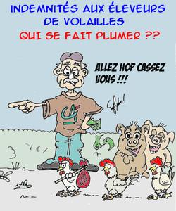 poule_indemnisation1