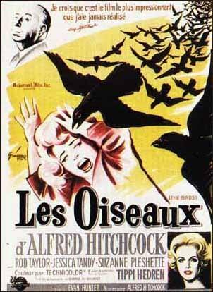Quel est le dernier film que vous avez vu ? Oiseaux