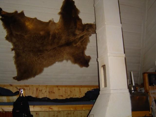 La peau d'ours dans la cuisine