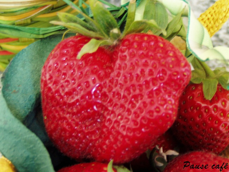 Marmiton Pain Cake Aux Fruits Secs
