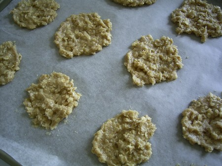 biscuits_avoine_002