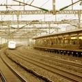 Shinkansen 700 in Odawara