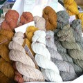 Rheingold Virtual Yarns